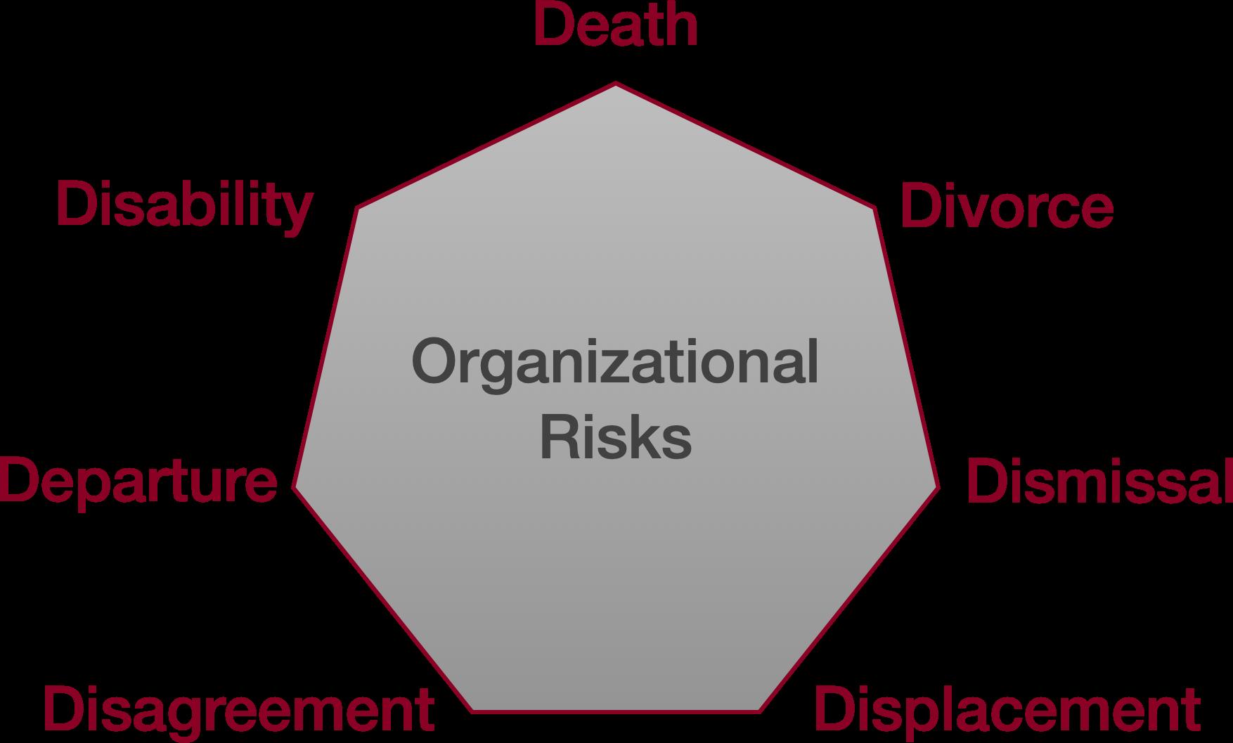 7 Organizational Risks